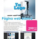 PaginaWebBasica299E
